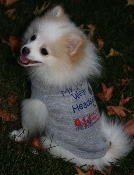 Send us your pet in our T and we will post it!